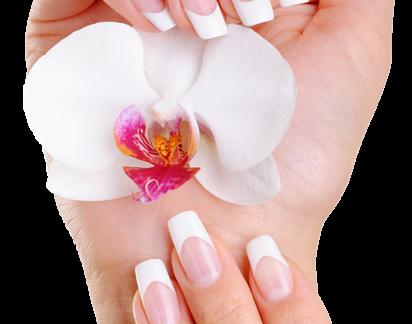 Manicure Basic
