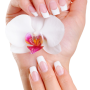 Manicure - basic